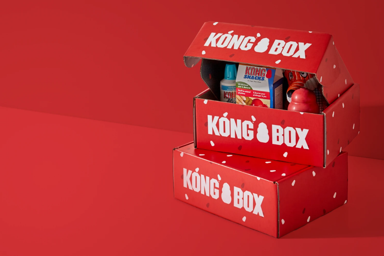 Best gifts for dogs - KONG Box