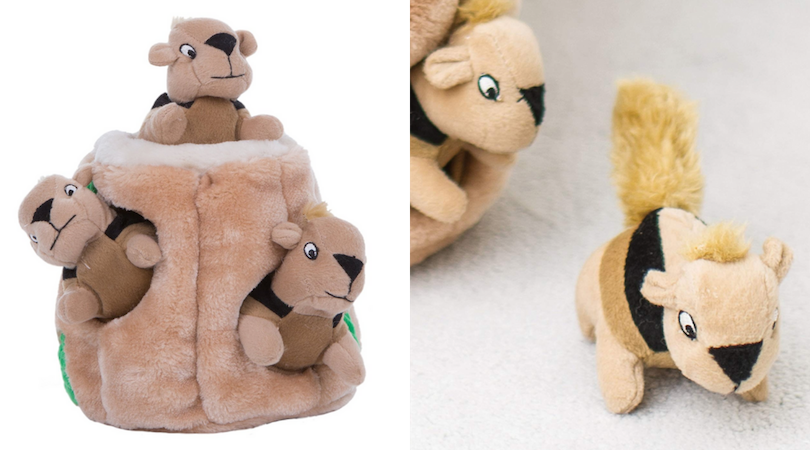 Outward Hound | Hide-a-Squirrel Interactive Plush Dog Toy