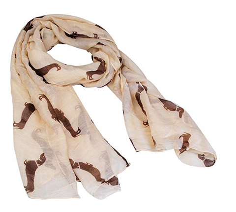 Dachshund Print Pashmina Scarf for Women