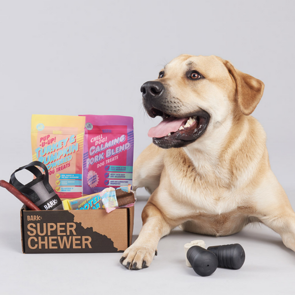 The best dog box subscription you can buy