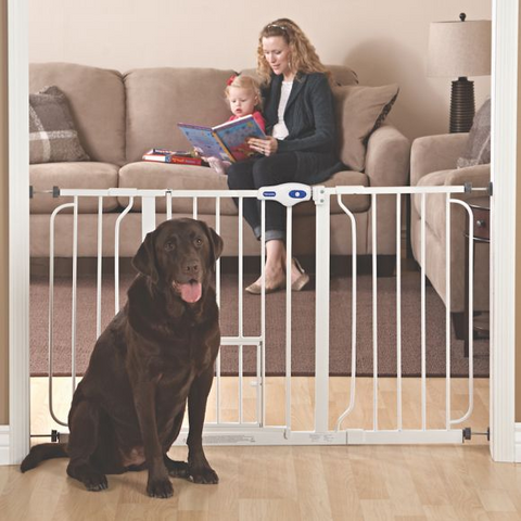 Best Dog Gate for Indoors - Top Paw® Extra Wide Pet Gate at PetSmart - djangobrand.com