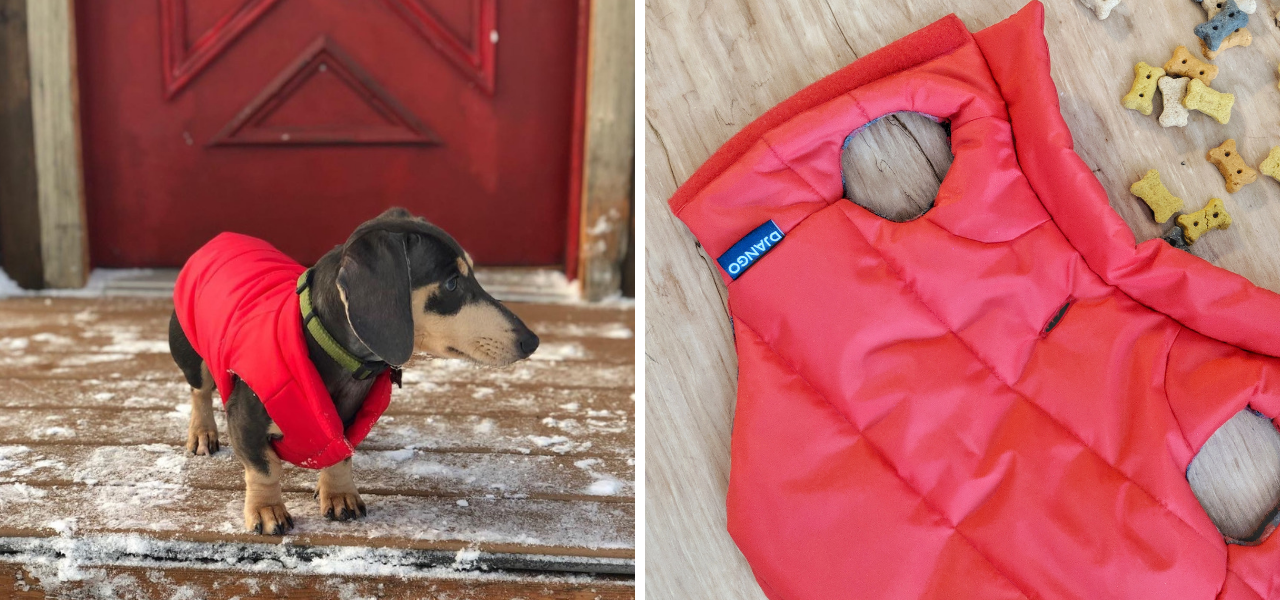 django reversible puffer winter insulated dog coat best selling down down jacket