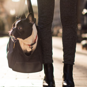 The DJANGO Pet Tote - Waxed Canvas & Leather Dog Carry Bag - Black