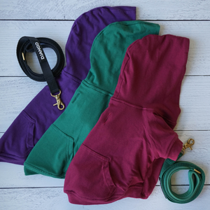 DJANGO Dog Hoodie in Forest Green - Super soft and stretchy dog hoodies and sweaters - djangobrand.com