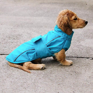 DJANGO City Slicker All-Weather Dog Jacket & Raincoat - Topaz Blue - djangobrand.com