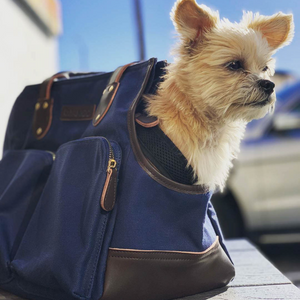 The DJANGO Pet Tote - Waxed Canvas & Leather Dog Carry Bag - Navy Blue