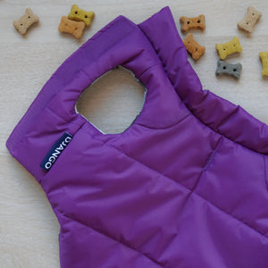 DJANGO Reversible Puffer Dog Coat in Violet Purple - djangobrand.com
