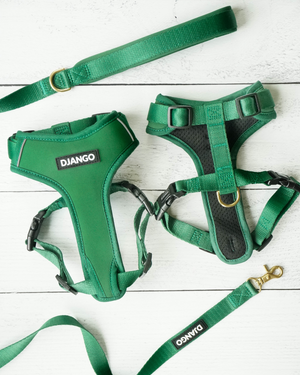 Django Adventure Dog Harness - Comfortable Neoprene Everyday and Weather-Resistent Dog Harness in Forest Green - djangobrand.com
