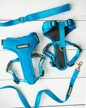 Django Adventure Dog Harness - Comfortable Neoprene Everyday and Weather-Resistent Dog Harness in Pacific Blue - djangobrand.com