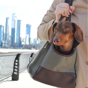 DJANGO Dog Carrier Bag - Waxed Canvas & Leather Dog Carry Bag - Olive Green