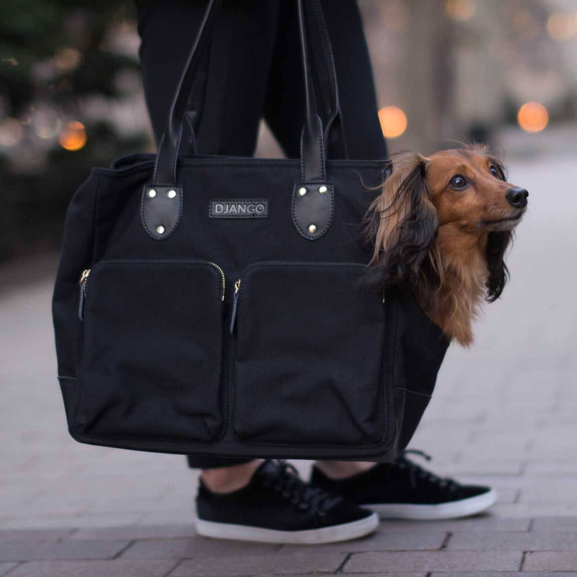 DJANGO Dog Carrier Bag - Waxed Canvas & Leather Dog Carry Bag - Black