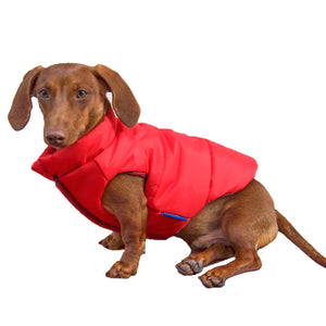 DJANGO Reversible Puffer Dog Coat in Lava Red - djangobrand.com