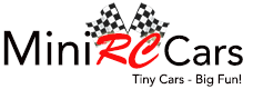 Mini RC Cars & Toys