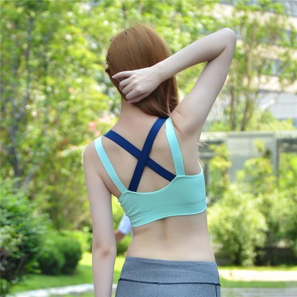 Padded Shockproof Sports Bra