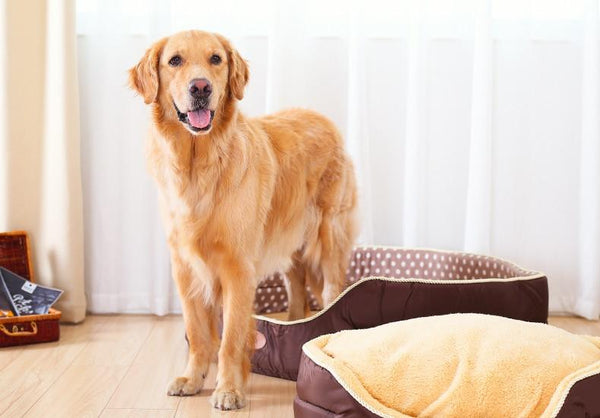 Susie - Double Sided Fleece Pet Bed