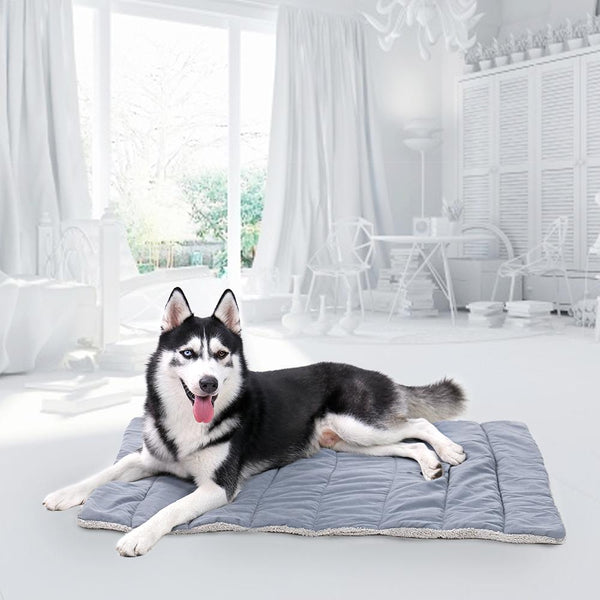 Evie - Foldable Travel Pet Bed