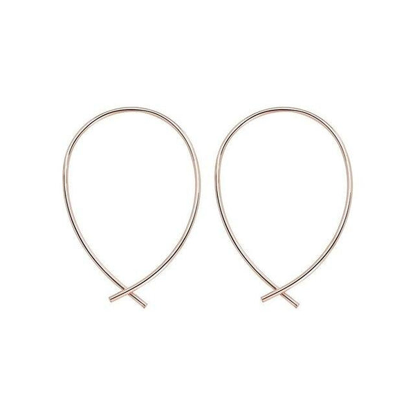 Horseshoe Loop Through Earrings