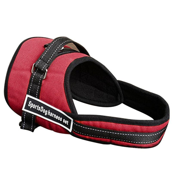 Dog Walking Harness