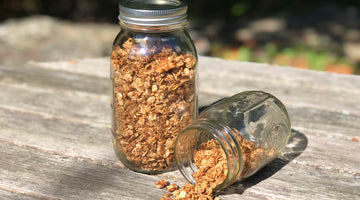 Propello Life Cinnamon Maple Protein Granola