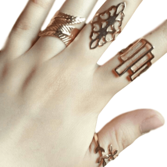 4 Piece Geometric Leaf Rings Set
