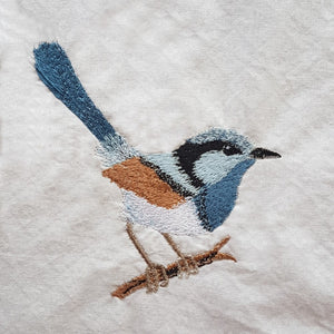 Native Blue Wren 1