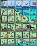 Crocodile - Aussie Fauna Blocks