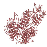 Native Bottlebrush - Redwork
