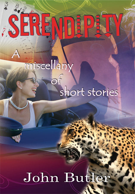 Serendipity - A miscellany of short stories - Spring Leaf Books