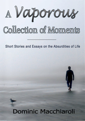 A Vaporous Collection of Moments - Short Stories
