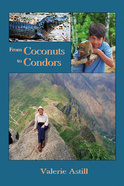 From Coconuts to Condors - travel to Brazil, Peru and Bolivia