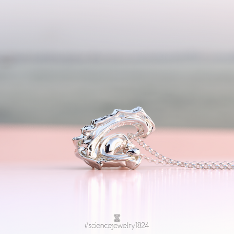 limbic system necklace in sterling silver