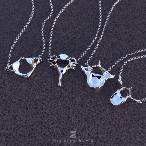 vertebrae necklaces in sterling silver - science jewelry