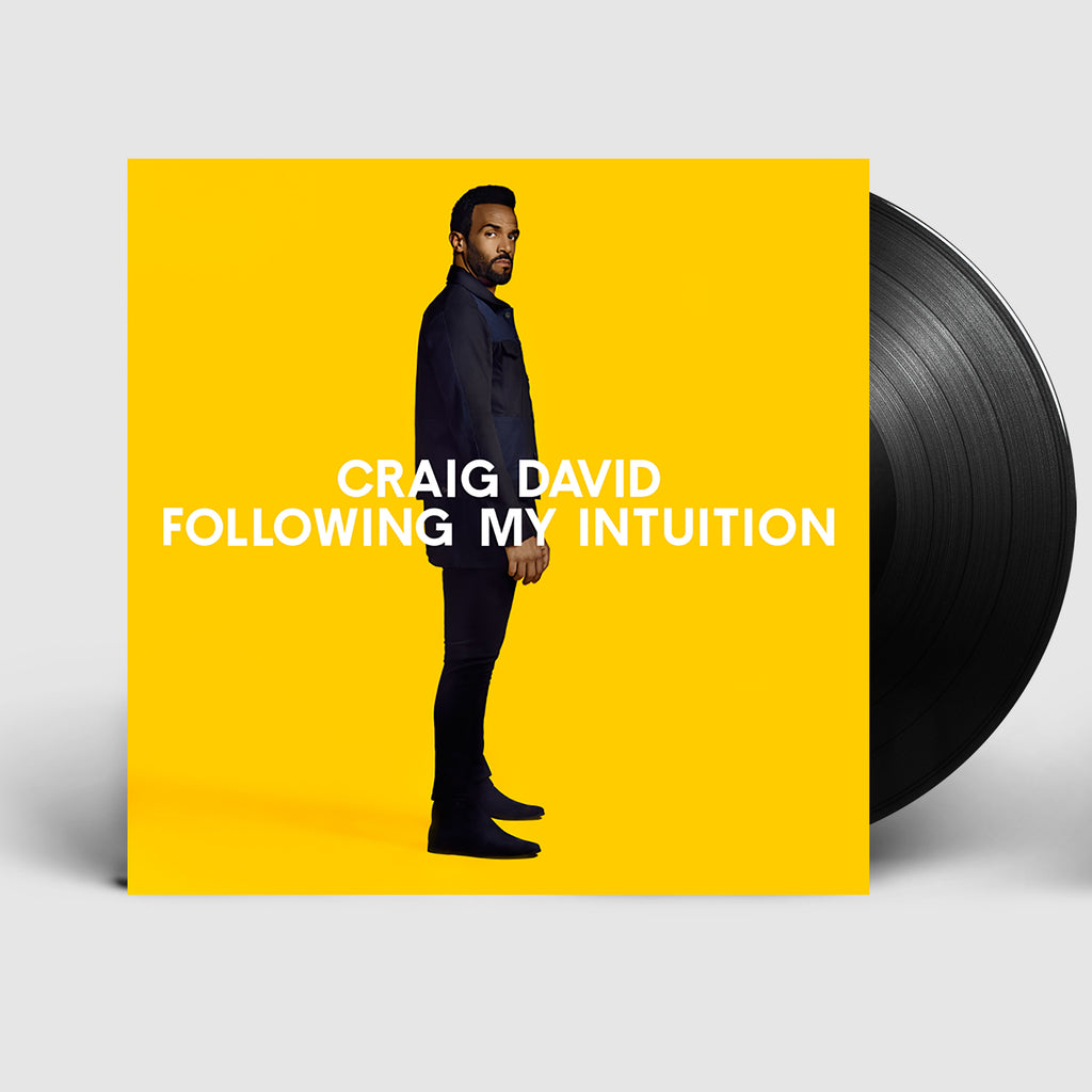 Following My Intuition Vinyl