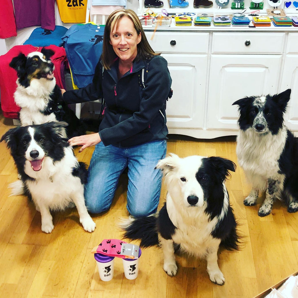 4 Collies= Heaven!