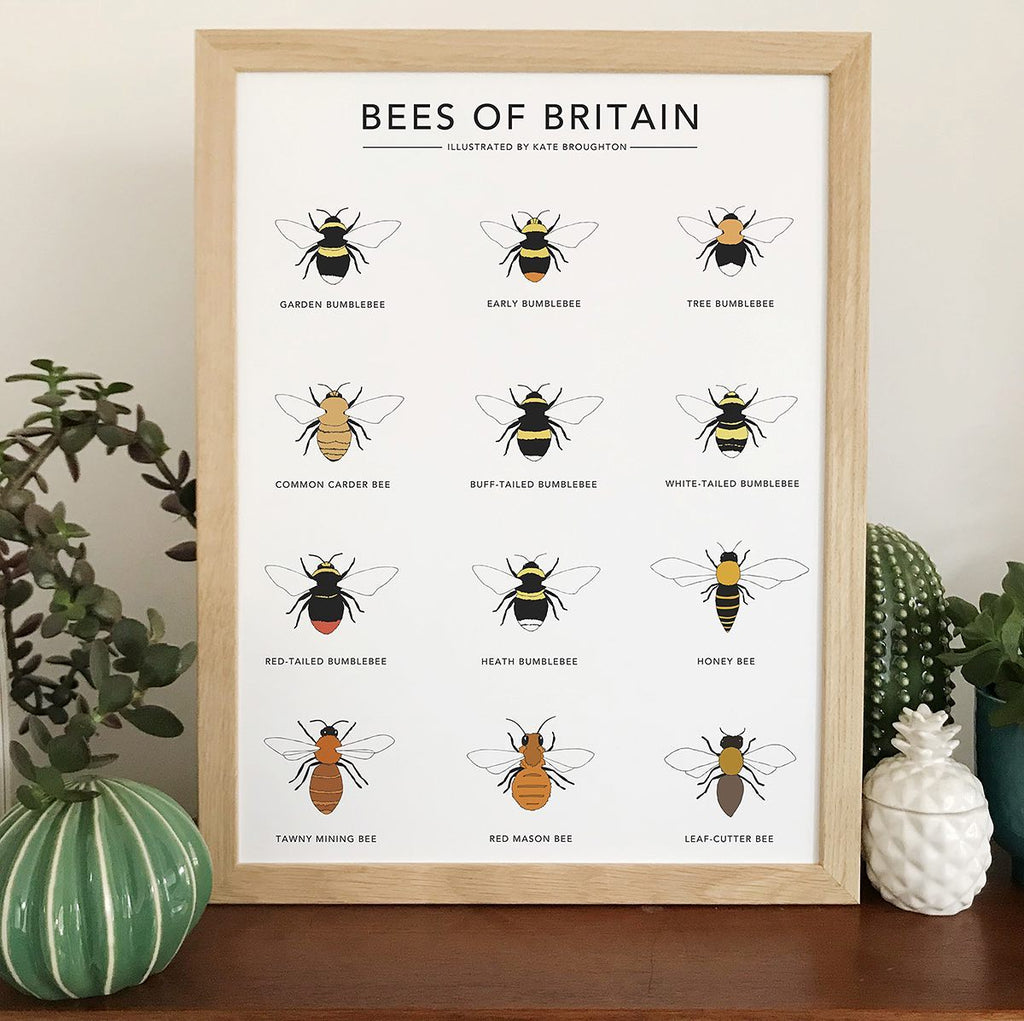 Bees of Britain.....