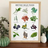 Birds, Animals & Plant Prints of Original Illustrations by Kate Broughton
