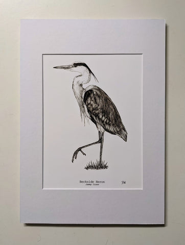 'The Backside Heron' Fine Art Print - by Dais SB Art