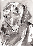 IB, Gina Andrews, InkBison, indian ink, inks, painting, pets, prints, animal, dog
