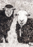 IB, Gina Andrews, InkBison, indian ink, inks, painting, pets, prints, animal, sheep, herdwick