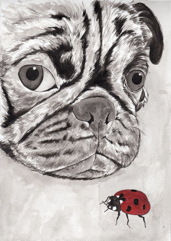 IB, Gina Andrews, InkBison, indian ink, inks, painting, pets, prints, animal, pug