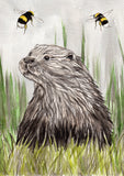 IB, Gina Andrews, InkBison, indian ink, inks, painting, pets, prints, animal, otter