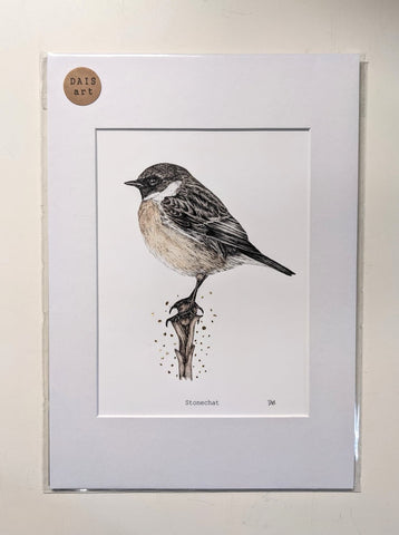 'Stonechat' - Fine Art Print Embossed with Gold by Dais SB Art