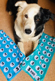 Recycled Buffs - Zak the Collie Dog