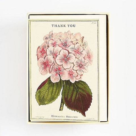 Cavallini & Co - Boxed Notes - Thank You - Hydrangea