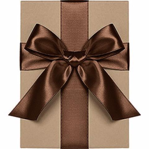 "Waste Not Paper - Ribbon - 1/4"" - Satin - Chocolate"