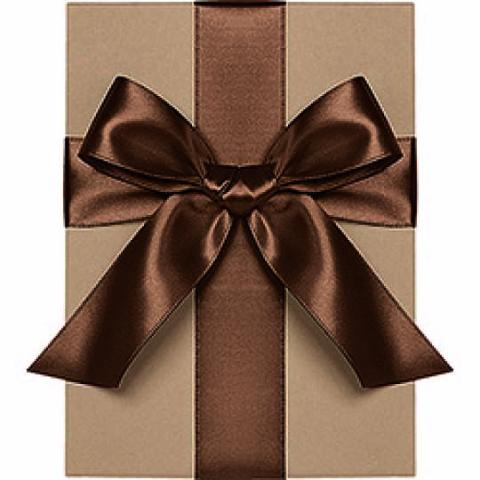 "Waste Not Paper - Ribbon - 1 1/2"" - Satin - Chocolate"