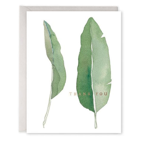 E Frances - Boxed Notes - Thank You - Big Leaf