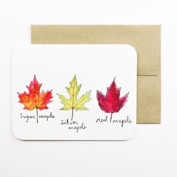 Field Day Paper - Greeting Card - Fall Maples