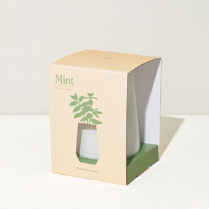 Modern Sprout Tapered Tumbler - Mint
