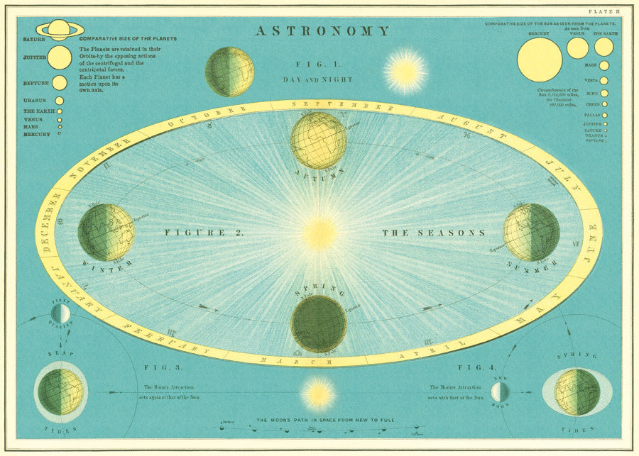 Cavallini & Co. - Wrapping Sheet - Astronomy